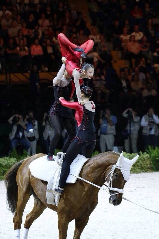 WORLD EQUESTRIAN GAMES-NORMANDY 2014